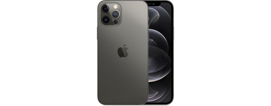 Apple iPhone 12 Pro A2407